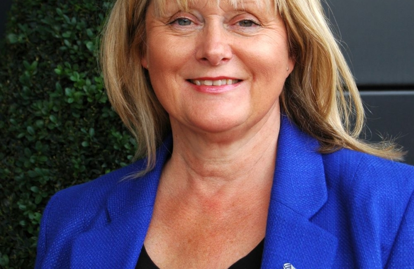 Anne Main MP
